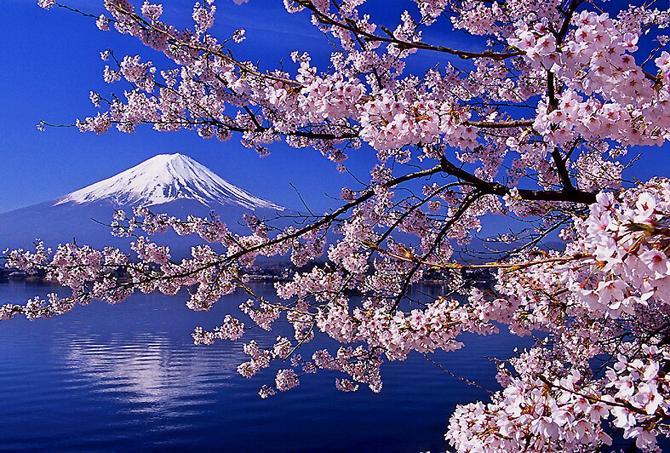 Conocemos y difundimos la cultura de Japón