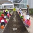 Durante el pasado mes de mayo (2013/14), el alumnado de Infantil disfrutó de una jornada lúdico-formativa dentro del área de conocimientos y sensibilización medioambiental desarrollada en las instalaciones de Casa […]
