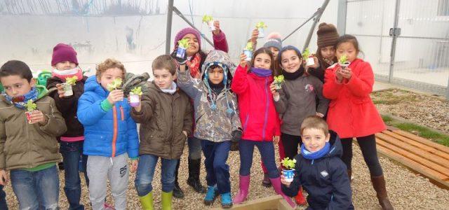 En marzo el alumnado de 2º de primaria visitó casa Gurbindo. El trayecto, de ida y vuelta, lo hicieron en el trenecito. Allí realizaron el taller de compostaje, en el […]